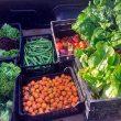 El Ayuntamiento dona los productos cultivados en los huertos urbanos